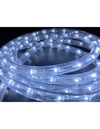 Hilo luminoso Cold white 5M